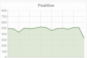 Peak flow indication
