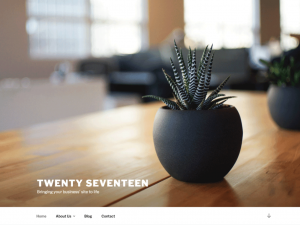 Twenty Seventeen: screenshot.png